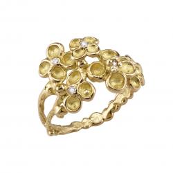 Mysterious garden ring